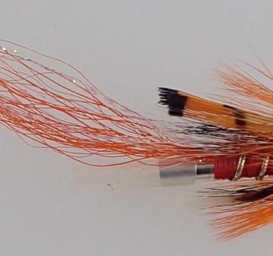 Allys Shrimp tube